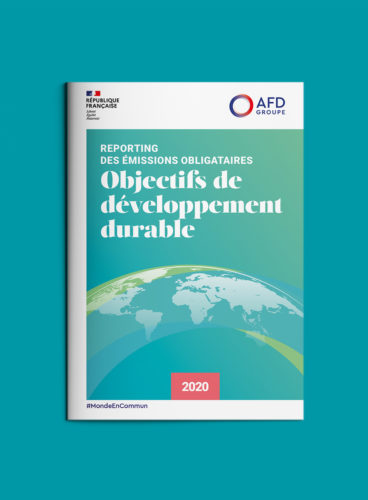 Edition AFD rapport ODD